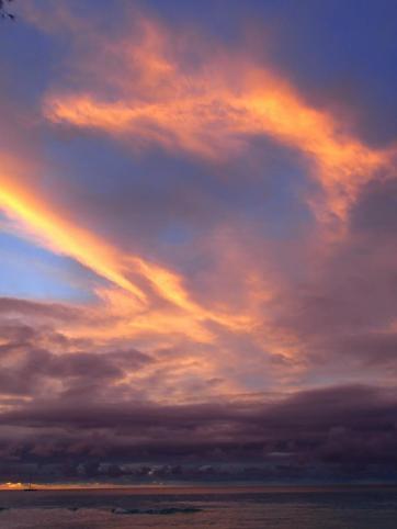 dolphin cloud