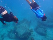 snorkeling the bimini road