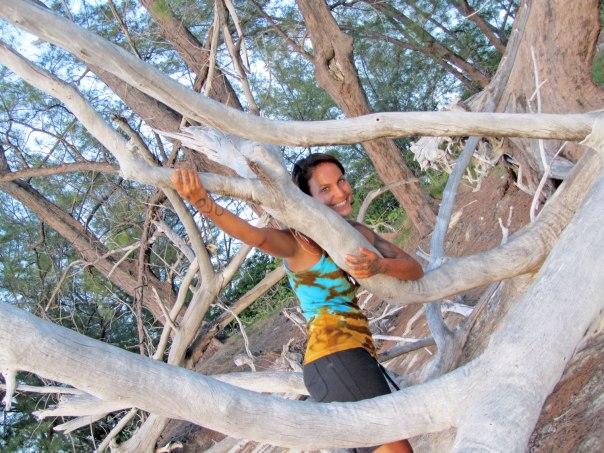 fun-with-tree