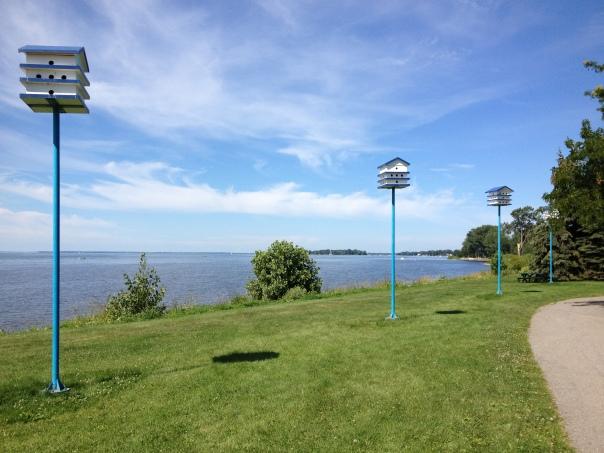 birdhouses along the lake