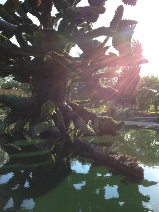 sun energy on tree of birds