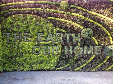 the earth our home