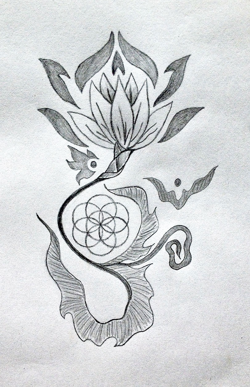 Lotus Symbolism Tania Maries Blog