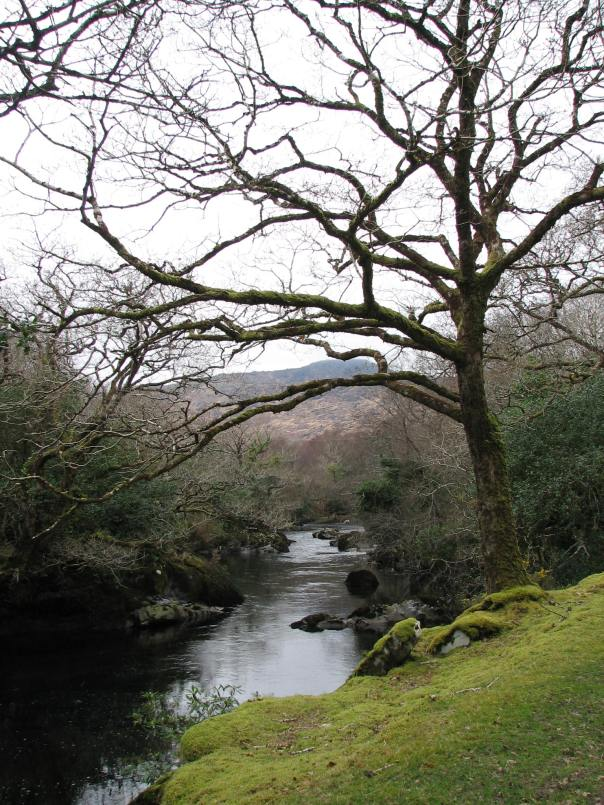 Ireland 2008 063