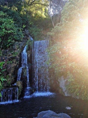 Pasadena Arboretum Waterfall