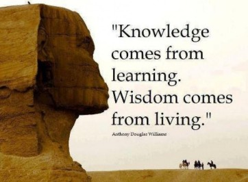 Anthony Douglas Williams about wisdom