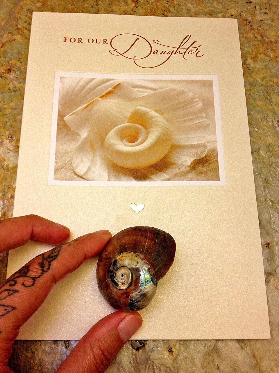 Spiral symbolism tania maries blog spiral shell biocorpaavc Choice Image