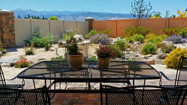 reno backyard