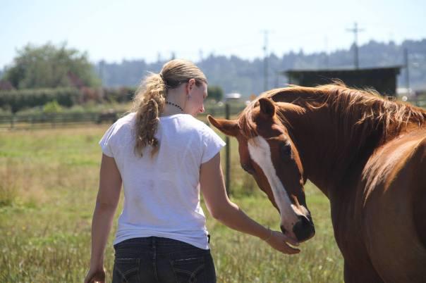 epona rise horses (3)