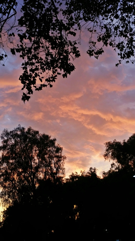 sunset3b