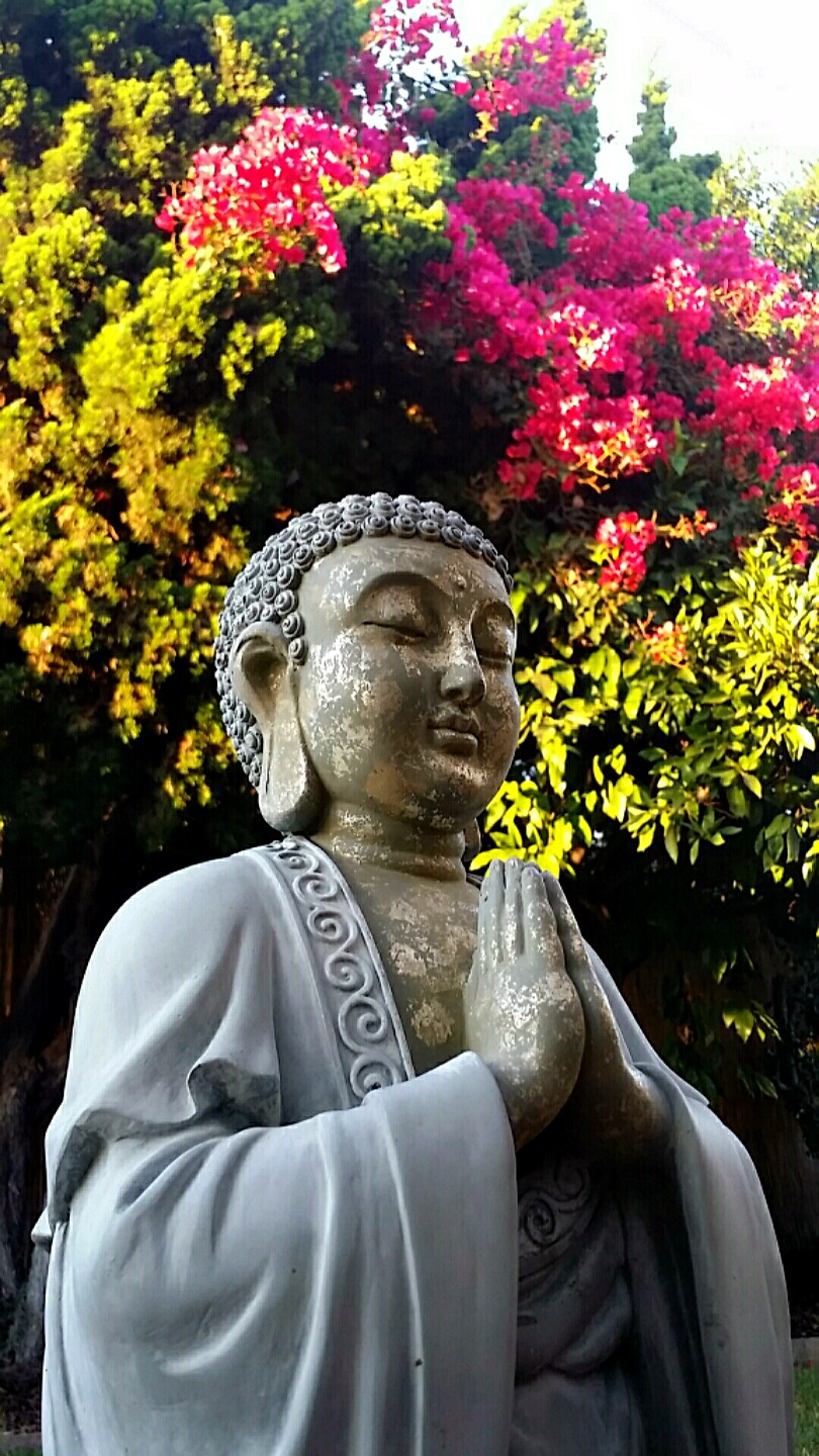 Eight auspicious symbols of buddhism tania maries blog my bodh gaya buddha asian statue in the garden bodh gaya is considered the most holy place on earth for followers of the buddhist faith and the place biocorpaavc Choice Image