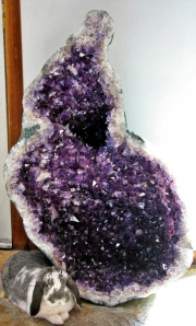 Joy-with-Amethyst