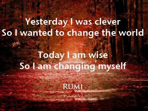 rumi wise