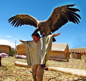 amaru and mallku condor