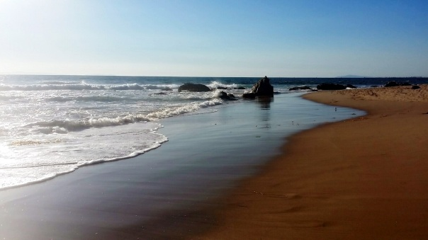 crystal cove beach (2)