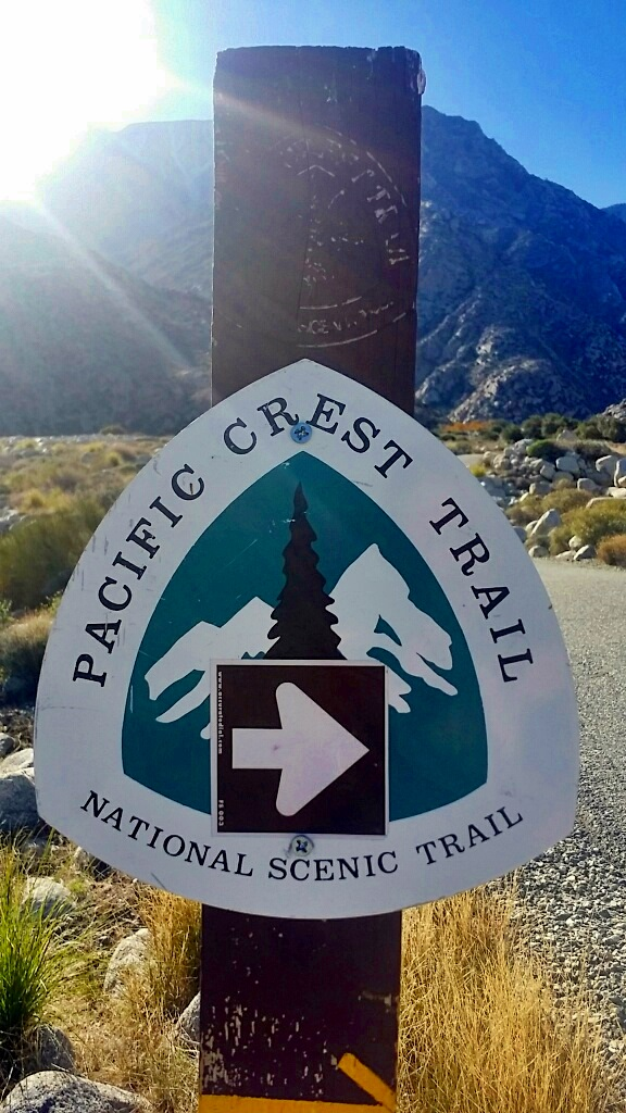 pacific crest trail christmas hike (11)
