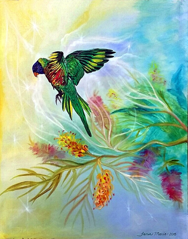 Rainbow Journey - Rainbow Lorikeet