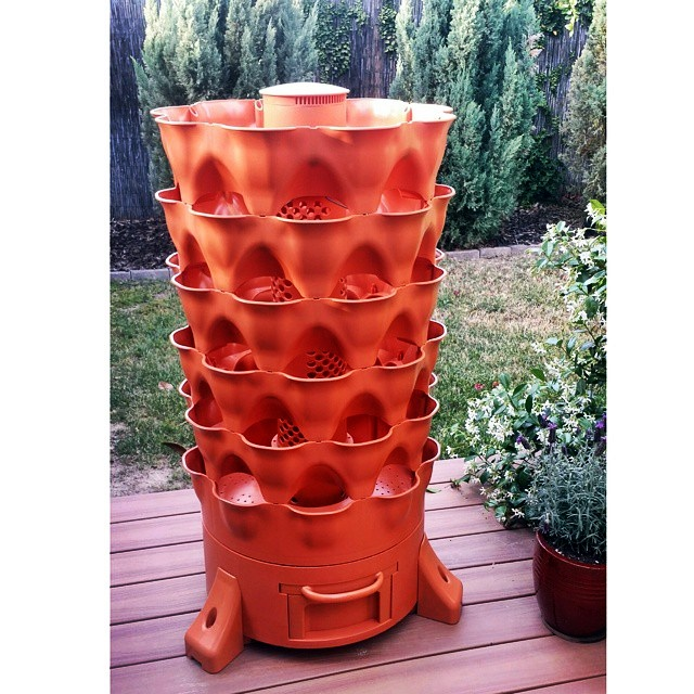 Garden Tower Project Tania Maries Blog