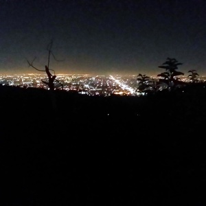 los angeles city scape at night
