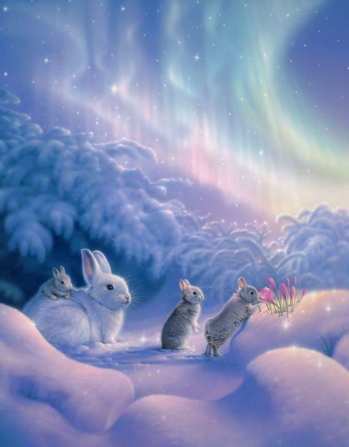 rabbit magick