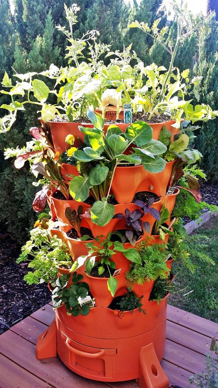 garden tower 2