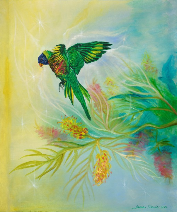 Rainbow Journey Rainbow Lorikeet