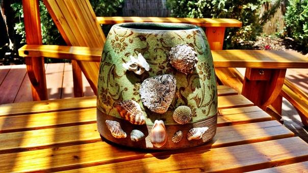 seashells6