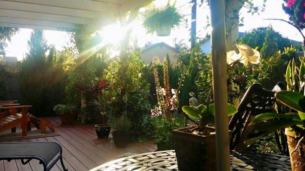 garden sanctuary