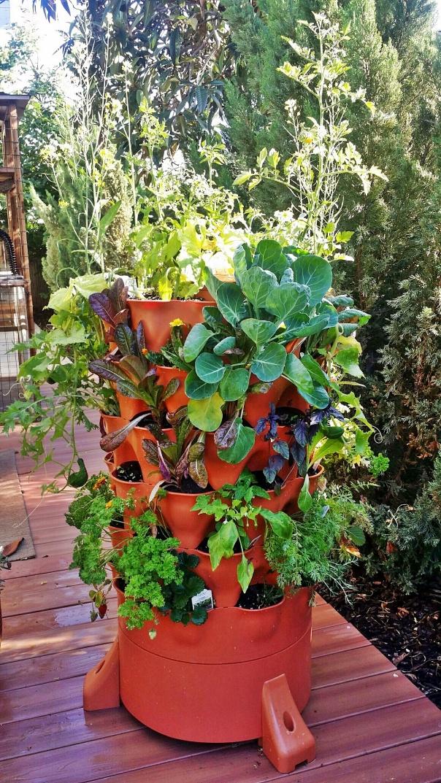 gardentower2