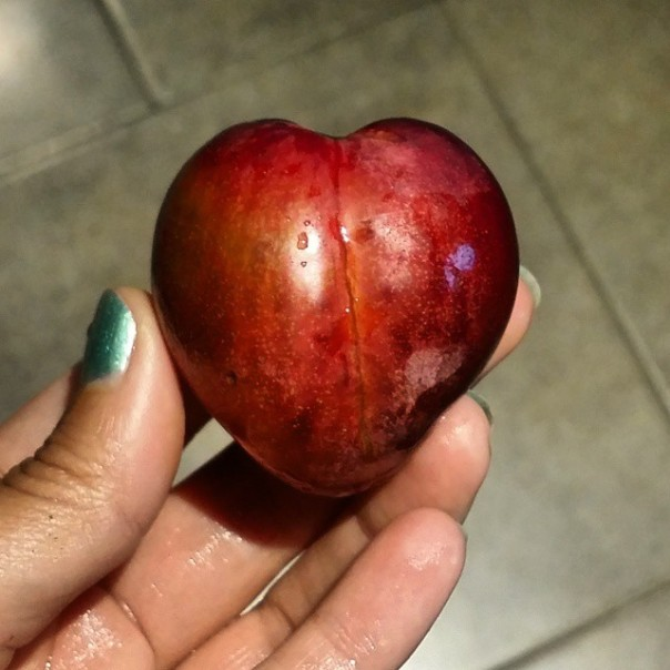 heart plum