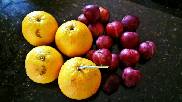 oranges and plums2