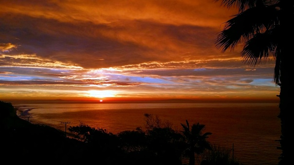 sunrise (8)