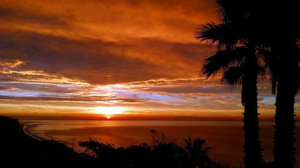 sunrise (9)