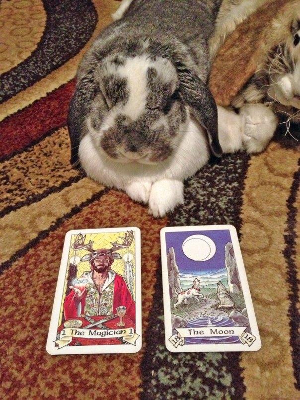 joy-cards