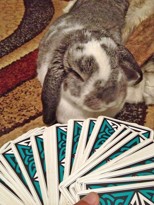 joy-cards2