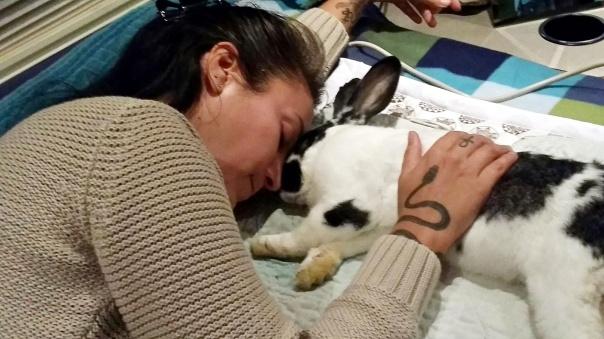 bunny-biomat-4