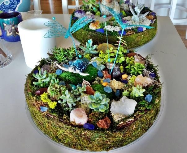 Mini Faery Succulent Gardens (6)
