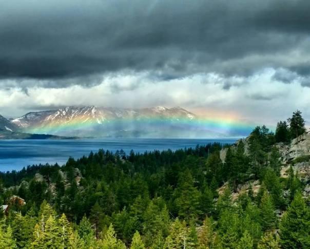 rainbow gliding