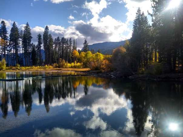 fallen leaf lake reflections.jpg