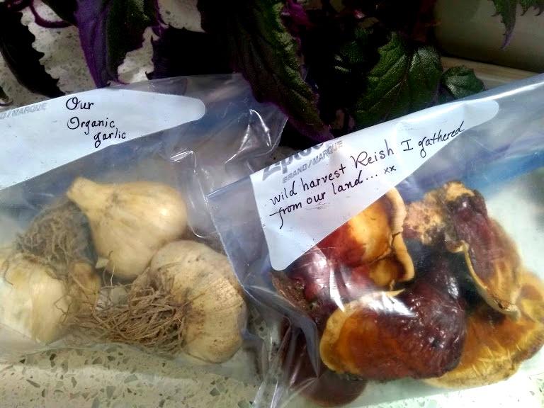 garlic and reishi